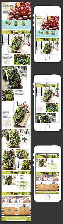 多肉植物详情页手机店铺内页