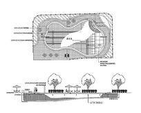 弧线形游泳池平立面 CAD dwg