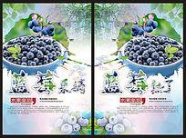 蓝莓熟了海报设计