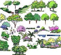 好看的手绘植物组合立面PSD素材