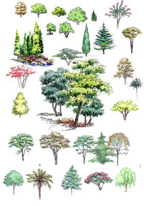 乔木立面图例