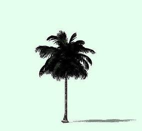 热带棕榈树SU