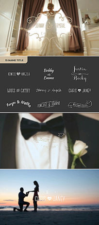 欧式婚礼微电影花纹标题字幕条模板