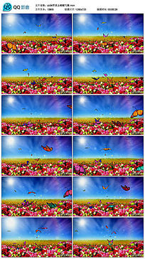 草原上蝴蝶飞舞舞台背景