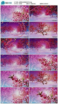 粉红色唯美桃花开花晚会背景