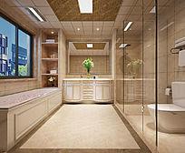 欧式卫生间3d效果图