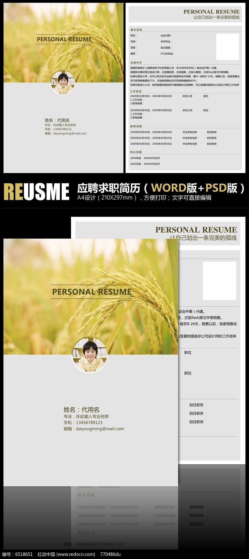 稻香丰收求职简历双格式模板PSD素材下载 求职简历设计图片