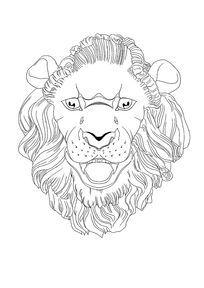 狮子头像手绘线描插图