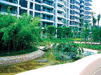 现代小区自然景观