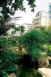 住宅景观中的小溪