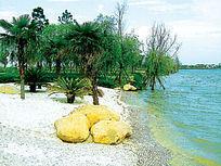 滨河水景景观实景图