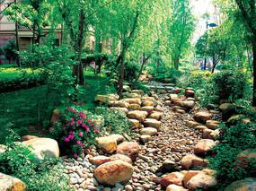 景区生态旱溪