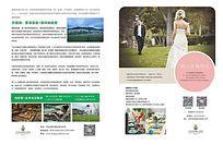杂志酒店温泉婚宴婚礼文字照片排版