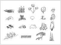灌木地被立面CAD图例