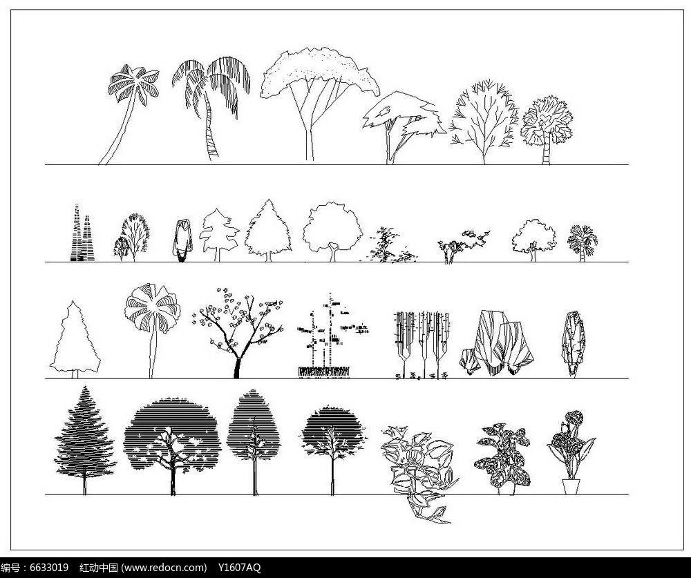 园林立面植物图例图片