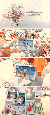 浪漫照片悬挂婚礼相册ae模板