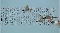 兰亭序王羲之书法动态背景视频