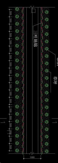 标准段道路绿化平面图 dwg