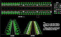 道路景观设计局部平面图 透视图