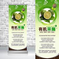 绿色有机农产品青柠檬新鲜水果易拉宝