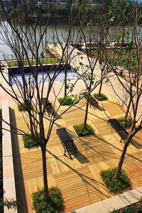 应用于公园的树池形式