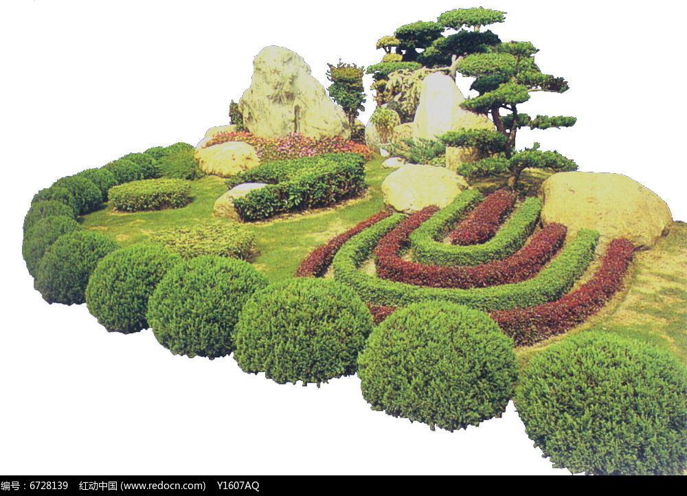 造型罗汉松植物组景psd素材下载_植物设计图片