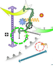 分析图箭头圈圈 (9) PSD