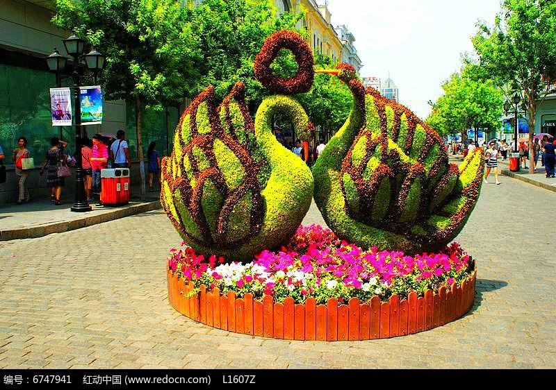 鸳鸯造型花坛jpg素材下载_植物设计图片