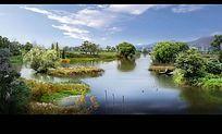 生态湿地公园效果图