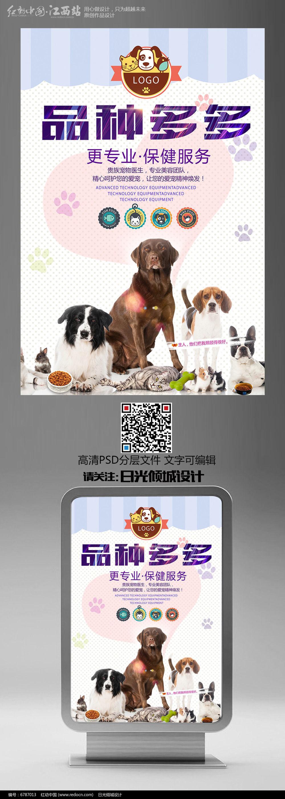 宠物店宣传海报图片