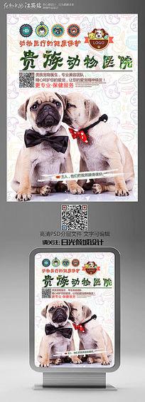 贵族动物医院宣传海报