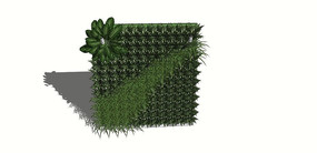 垂直绿化植物墙SU模型