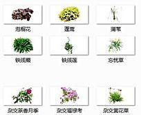 植物单体集合SU模型