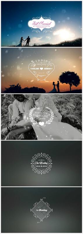 百组豪华婚礼标题徽章动画结婚日期动画ae模板