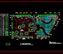 小广场绿化配置平面图 dwg