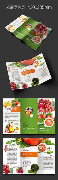 绿色乡村采摘园宣传折页版式设计