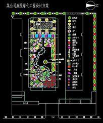 某公司庭院景观绿化设计平面图