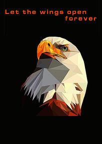 保护老鹰的海报