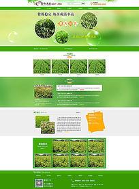 绿色苗木种植网站模板 PSD