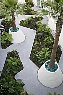 旧金山第四街景观树池设计