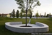 社区邻里公园树池