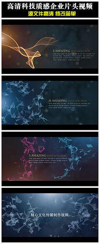 会声会影x6X7X8科技企业宣传片头开场视频模板