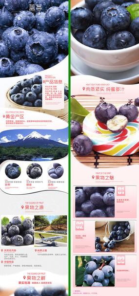 手机端app素材蓝莓详情页设计描述psd素材 PSD