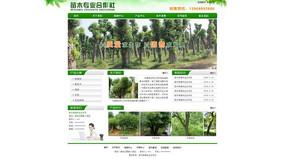 绿色苗木网页设计