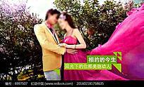浪漫时尚婚礼字幕版本