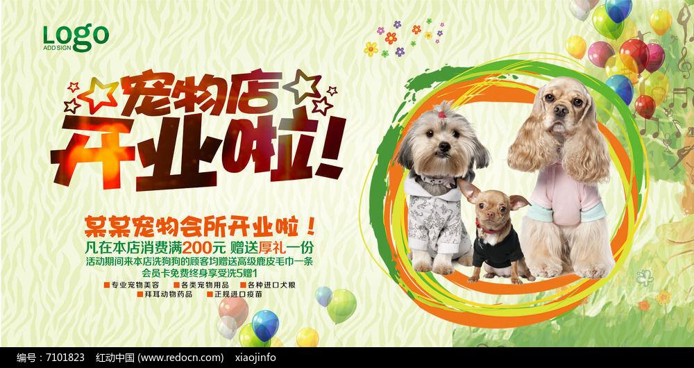 可爱宠物店开业海报