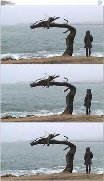 面对大海的女人和弯曲的树杆实拍视频素材 mov