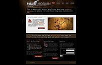 网站设计公司欧美网页设计