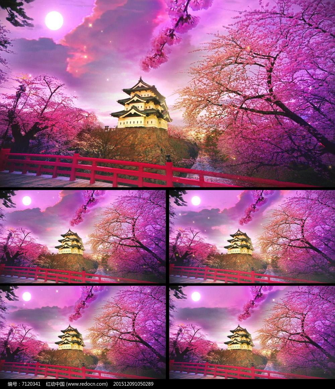 樱花角楼视频图片