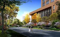 校园绿化景观